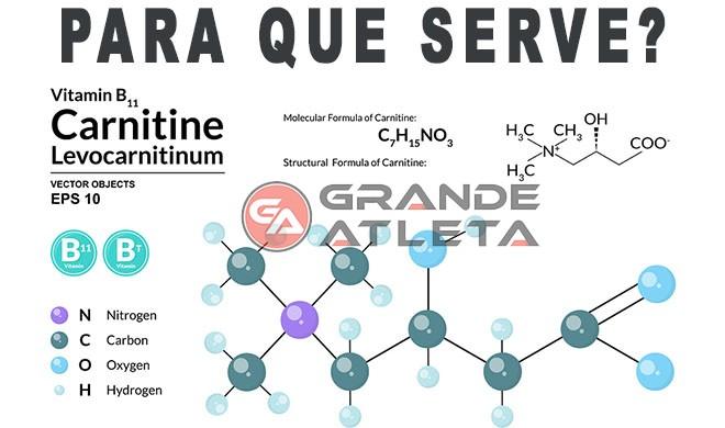 Vitamina B11 Fórmula Estrutura química Carnitina