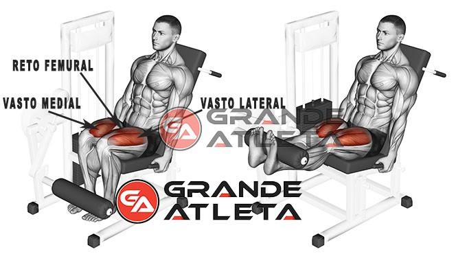 cadeira extensora exercício