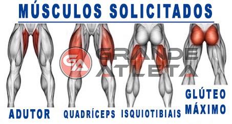Músculos solicitados trabalhados