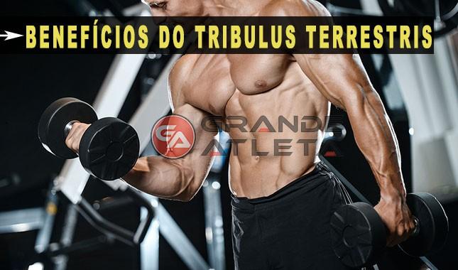 benefícios testosterona libido