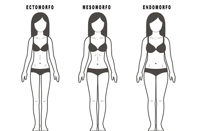 endomorfo feminino mulheres