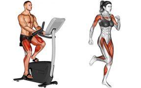 HIIT antes ou depois da musculação
