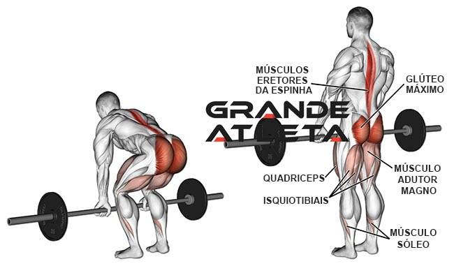levantamento terra músculos trabalhados