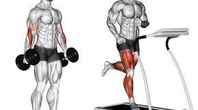 Musculação e aeróbico em periodos alternados