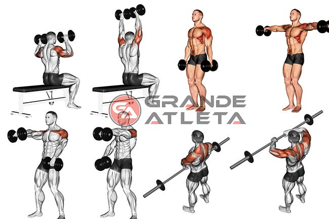 exercícios para ombros