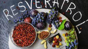 resveratrol para que serve